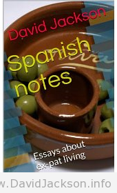 Spanish Notes book cover