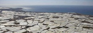 The greenhouses of Almería