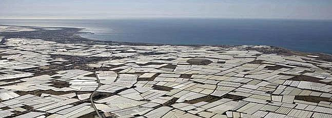 30 000 ha of almer a covered by greenhouses davidjackson - Fotos de el ejido ...